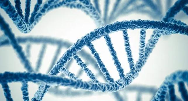 Pengertian, Kajian, Konsep dan Perkembangan Genetik dalam Biologi