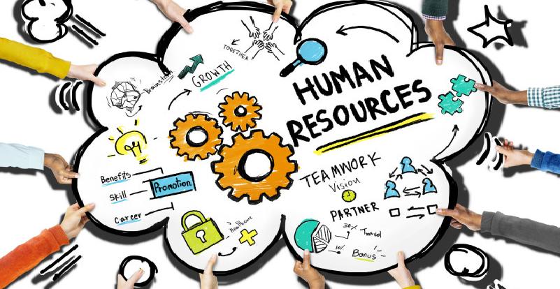 Pengertian, Fungsi dan Contoh Sumber Daya Manusia (SDM)