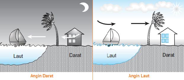 Pengertian, Proses Terjadinya Angin Darat Dan Angin Laut