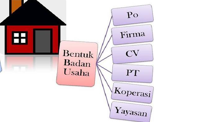 Pengertian, Jenis, Fungsi dan Contohn Badan Usaha