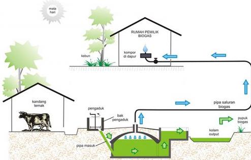 Pengertian, Manfaat dan Cara Pembuatan Biogas