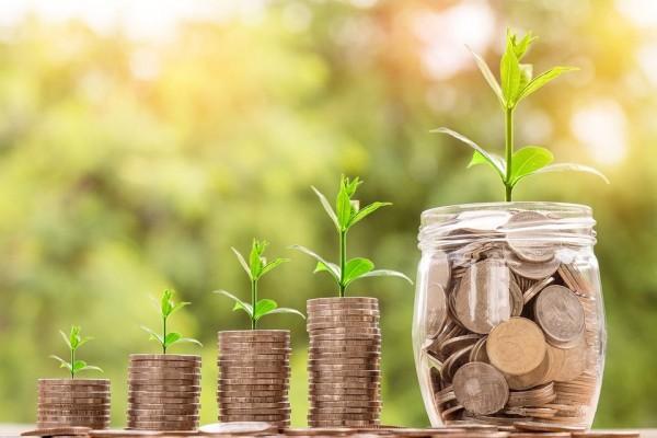 Pengertian Investasi adalah : Tujuan, Fungsi dan Jenisnya