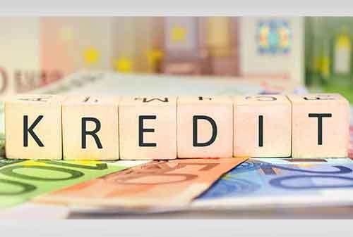 Pengertian Kredit Adalah : Fungsi, Unsur, Prinsip, dan Macamnya