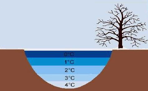 Pemuaian Zat Cair dan Pengertian Anomali Air