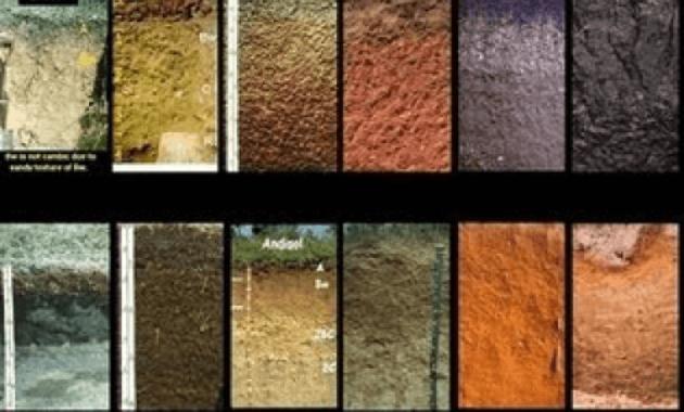 Pengertian dan Jenis dari Kegiatan Survei Tanah
