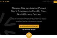 Peluang Usaha Sampingan Bisnis Reseller Terbaru Bersama Evermos